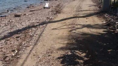 Photo of ¡Increíble pero cierto!,sin muro de protección la zona turística de costa Verde en Montecristi.