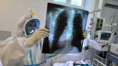 Photo of La OMS ve cada vez más improbable una segunda ola importante del cornavirus