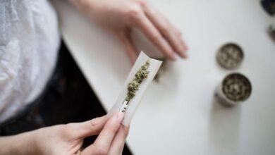Photo of COVID-19 cambia el mercado mundial de las drogas; dispara el consumo