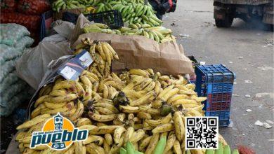 Photo of Productores vaticinan más alzas de precios en canasta familiar