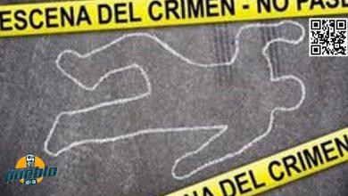 Photo of Haitiano mata de martillazo un compatriota durante pleito en Verón, La Altagracia