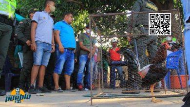 Photo of Fiscalía de Santiago desmantela otra gallera que operaba de manera clandestina