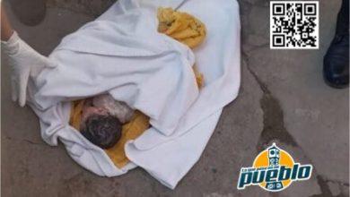 Photo of Abandonan a un recién nacido en un basurero