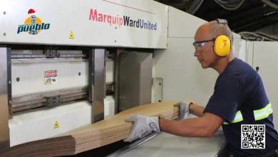 Photo of RD es punto estratégico para crecimiento industria del papel
