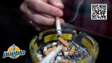 Photo of OMS lanza campaña para que 100 millones dejen de fumar ayudados por Whatsapp