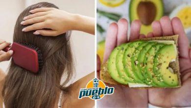 Photo of Conoce los 7 alimentos que te ayudarán a prevenir la pérdida de cabello