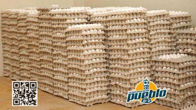 Photo of Agricultura comprará huevos para intervenir en su precio