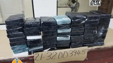 Photo of Ocupan en Puerto de Haina 60 paquetes de cocaína en sacos de azufre traídos de Colombia