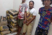 Photo of PN apresa cuatro personas, ocupa 67 porciones presunta marihuana y varias fundas cemento gris en Villa Vásquez.