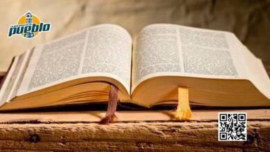 Photo of Ministerio de Educación distribuirá miles de biblias en las escuelas el próximo año escolar