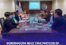 Photo of Gobernadora Nelsy Cruz participa en diálogo con miembros del Ministerio de Economía, Planificación y Desarrollo.